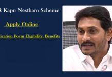 YSR Kapu Nestham Scheme